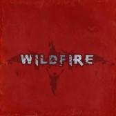 Neben dem Wild Rock Projekt beackern Widfire die Bühne!
