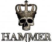 """Sie sehen sich als Party-Könige und den """"Hammer"""" als neunen Platzhirsch!"""
