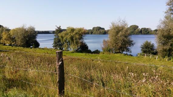 Die Strecke Richtung Bosau und Plöner See liegt landschaftlich schön!