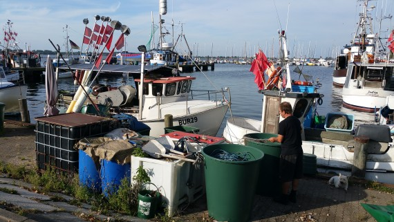 Geiles Ambiente im Hafen von Fehmarn. Ich stehe auf sowas!